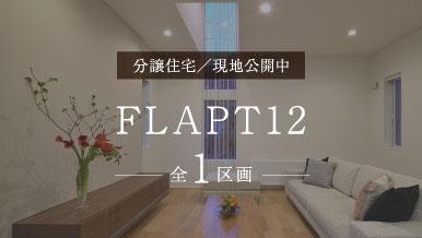 FLAPT #12 / MODEL HOUSE